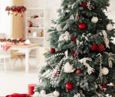 Já decorou sua casa para o Natal?