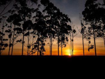 """""""Eu amo Botucatu"""" – Como fotografar paisagens?"""